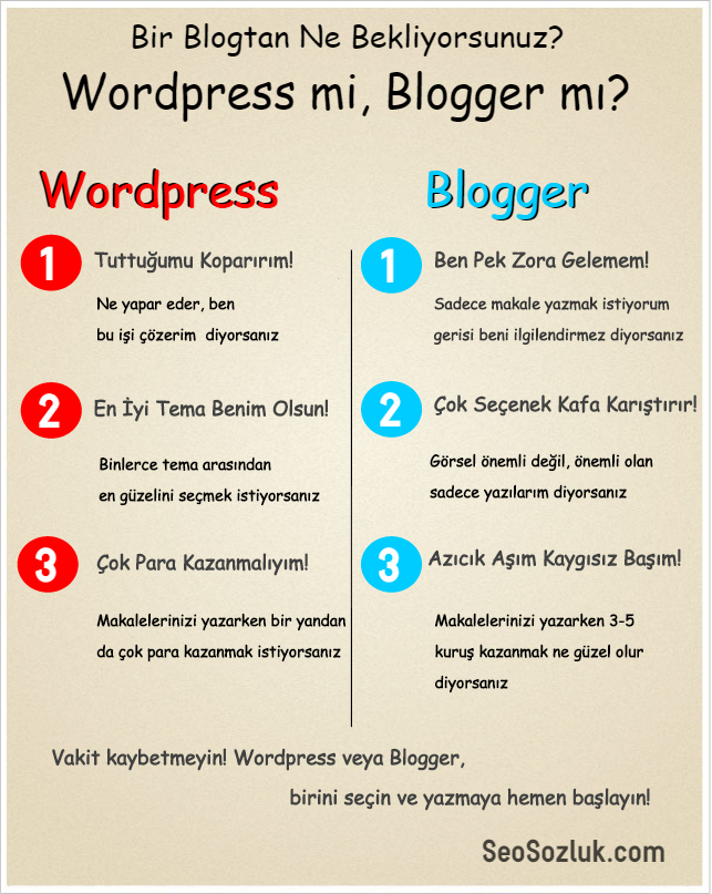 wordpress - infograph