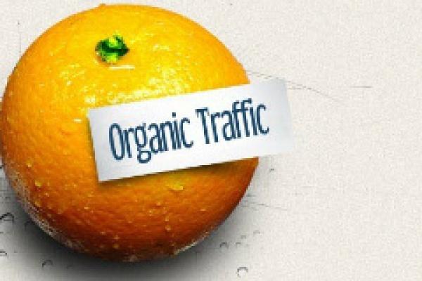 Organik Trafik
