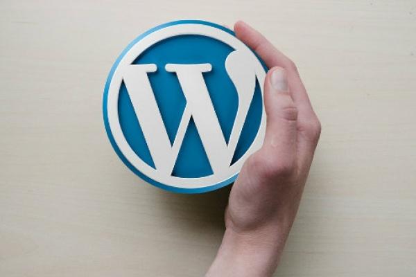 seo-wordpress-harika