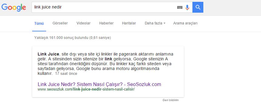 Google zengin cevaplar
