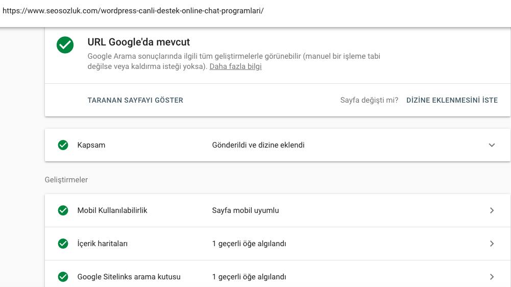 Google web araçları - URL denetimi