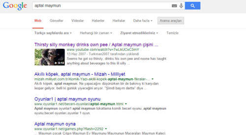 Google Ziyaret Etmedikleriniz