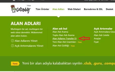 Alan transfer et GoDaddy