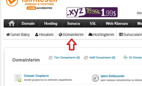 Domainlerim
