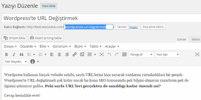 seo-wordpress-url-degistirmek