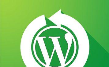 wordpress dönüşüm optimizasyonu