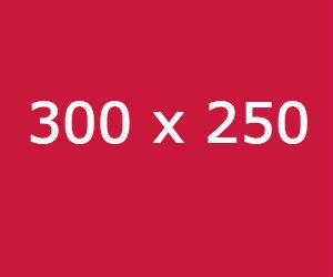 300 x 250 - En iyi çalışan adwords görselleri