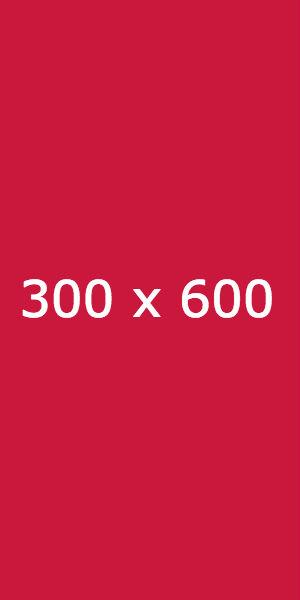 300 x 600 - En iyi çalışan adwords görselleri