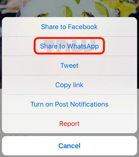 sharetowhatsapp instagram