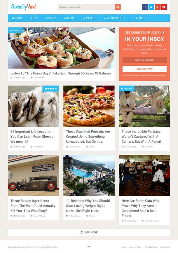 SociallyViral - WordPress SEO Uyumlu Temalar